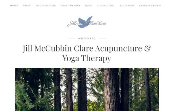 Jill McCubbin Clare | Website Design Kingston