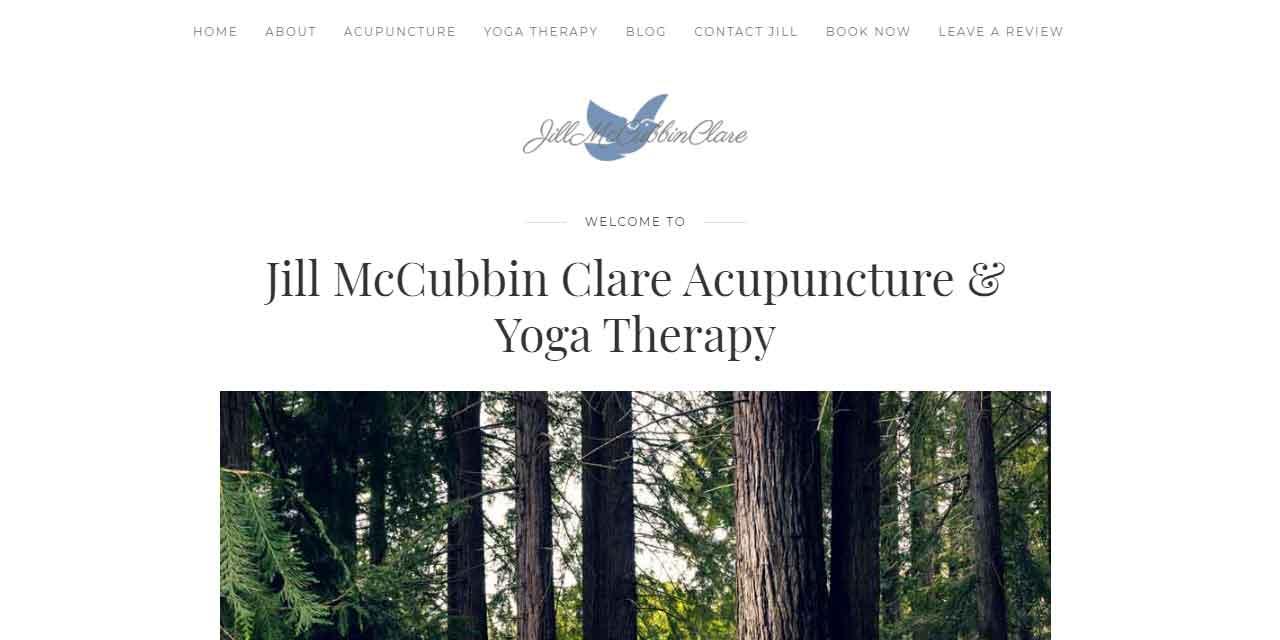Jill McCubbin Clare   Website Design Kingston