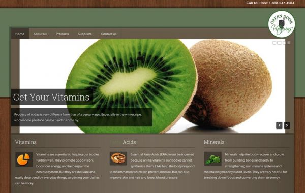 Web Design Kingston | Our Portfolio | Green Door Vitamins