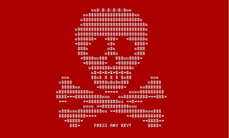 Kingston Web Design | Petya Cyber Attacks