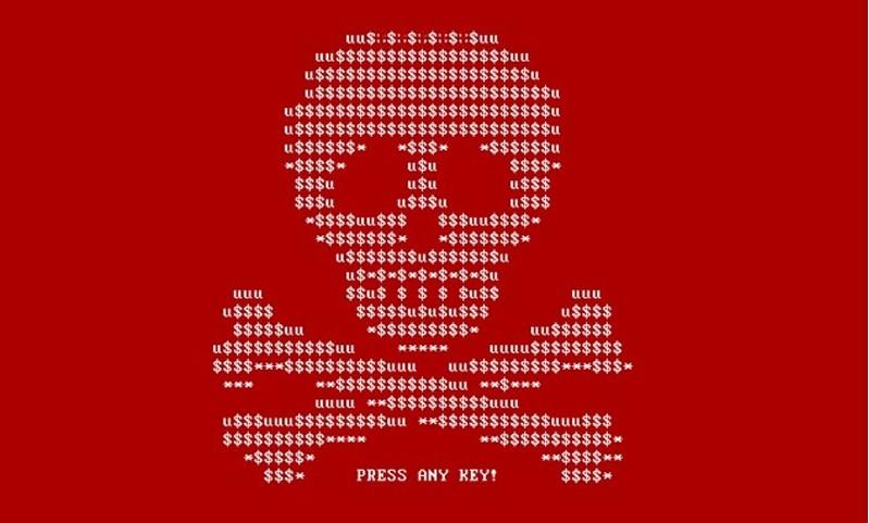 Kingston Web Design | Petya Cyber Attacks