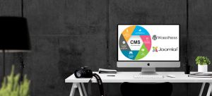 Web Design Kingston | Content Management Systems | WordPress