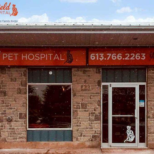 WDK Portfolio   Fairfield Pet Hospital
